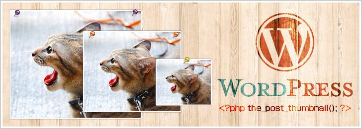 [WordPress]アイキャッチ画像の設定方法と複数のサイズを用意する方法